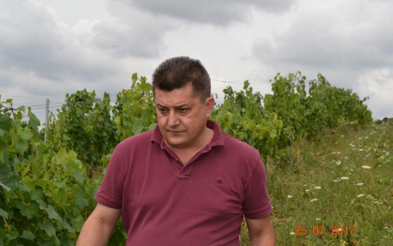 Vinul de Fântânița țintește piața premium în 2018