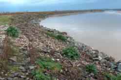 Licitație de 12,1 milioane lei pentru regularizarea unui tronson din râul Someșul Mare