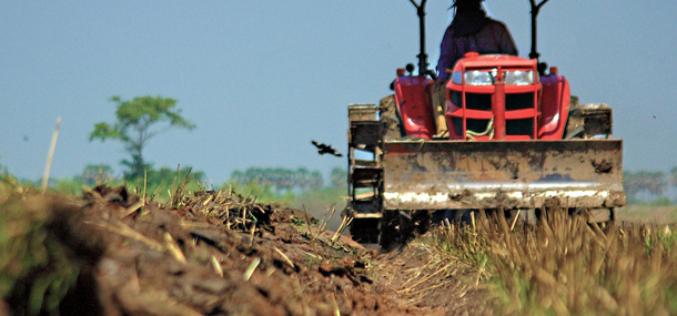 Bistrița-Năsăud, în coada clasamentului la tranzacțiile cu terenuri agricole. Doar 881 în primele 11 luni din an