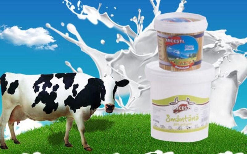 Fabricile de lactate ale Bendearcris Prodcom scoase la licitație. Cine are 1 milion de euro?