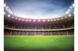În așteptarea finanțării, se face studiul de fezabilitate pentru stadionul de 12.000 de locuri