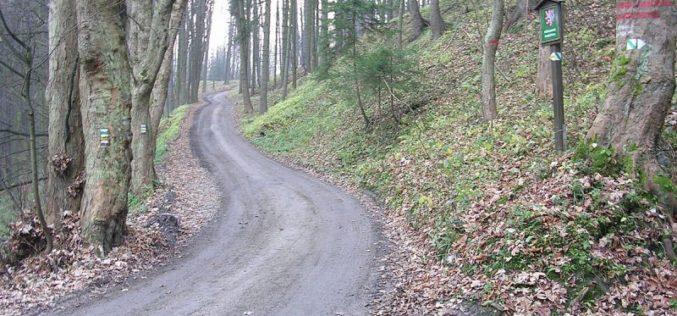 Asfaltare de 1 mil. euro la Leșu și Poiana Ilvei