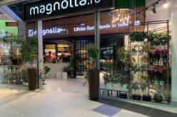 Bistrițenii de la MAGNOLIA, liderii pieței de flori din România, cu venituri de peste 30 mil. lei