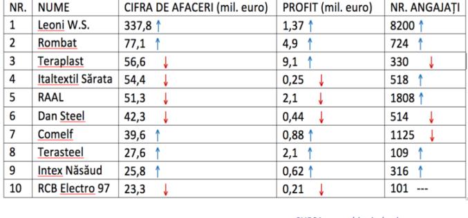 Primele 10 firme bistrițene învârt 745 mil. euro
