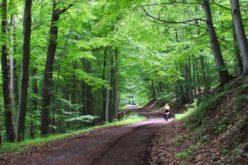Primăria Sângeorz-Băi propune modernizarea a 10,9 km de drumuri, parțial prin arii protejate