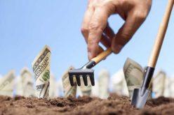 Numărul afacerilor înființate de bistrițeni a scăzut cu peste 22% în 2020