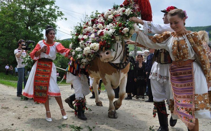 """Vrei o porție de turism cultural de Rusalii? Căianu Mic te poftește la """"Înstruțatul boului"""" și la spectacolele dedicate Zilelor comunei!"""