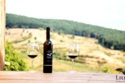 Vinurile LILIAC (Batoș-Lechința) au ajuns în Canada. Urmează facilități de cazare în vie!