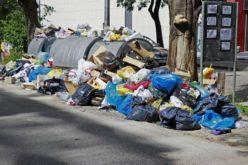 Cristian Niculae promite că bistrițenii nu vor plăti mai mult pentru gunoiul menajer
