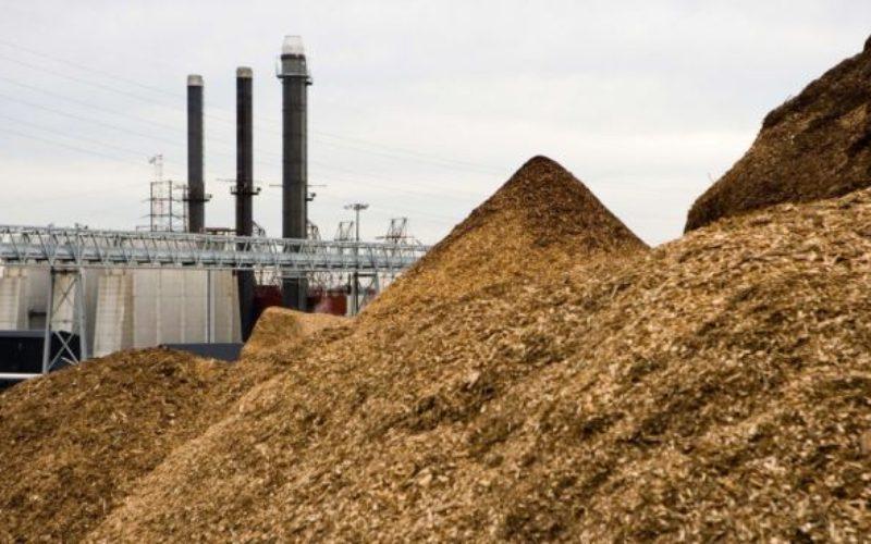 La Telciu va fi construită o centrală pe biomasă care va produce electricitate și căldură
