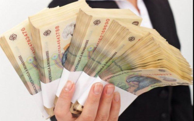 IMM Invest: 44.000 de companii sunt aşteptate să împrumute 15 mld. lei