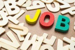Noi locuri de muncă în județ: Influent, Cofetăria Doris, Crama Veche și DM fac angajări