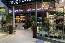 Proprietarii florăriilor Magnolia au oprit demersurile de extindere și se axează pe magazinele existente