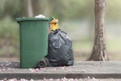 O firmă cu 2 angajați a făcut profit de peste 1 mil. lei din colectarea deșeurilor