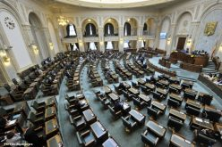 Senatul a aprobat plafonarea prețurilor la medicamente și alimente