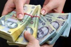 VEZI care sunt cele mai profitabile 10 companii din Bistrița-Năsăud