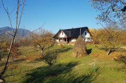 Primarul-antreprenor Traian Ogâgău cumpără case vechi în zona Sg-Băi ca să facă agroturism