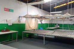 O ciupercărie modernă e scoasă la vânzare cu 300.000 euro
