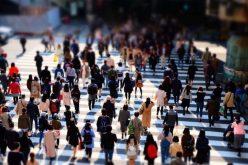 Studiu: Top 100 cei mai doriți angajatori din România. Multinaționalele domină