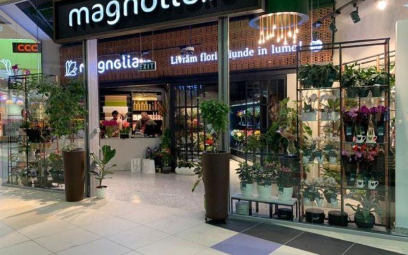 Magnolia a vândut în 2019 flori de peste 36 mil. lei