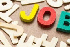 Ce locuri de muncă sunt disponibile în județ săptămâna aceasta