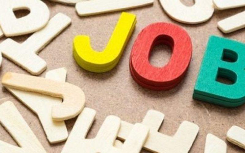 Ce locuri de muncă sunt disponibile săptămâna aceasta în Bistrița-Năsăud