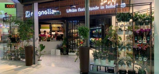 Bistrițenii de la Magnolia deschid două noi puncte de lucru în România