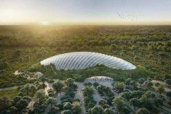 Nicolae Moldovan: Becleanul va avea Grădina Urbană Transilvania