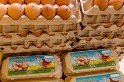 O fermă din Blăjeni vinde ouă de găină de peste 1,4 mil. lei anual