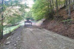CML.RO modernizează 12,1 km de drumuri forestiere la Telciu