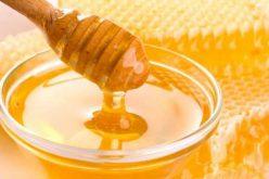 O familie din Chiuza investește peste 1 mil. lei într-o fabrică de procesare a produselor apicole