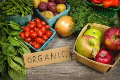 Bistrițenii, locul 5 pe țară la agricultura ecologică